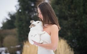 Картинка девушка, лицо, волосы, кролик, профиль