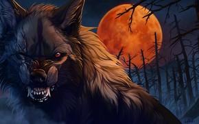 Обои шерсть, кровавая Луна, Wolfroad, мертвый лес, ночь, клыки, шрамы, art, оборотень, злобный взгляд, волк, пасть, ...