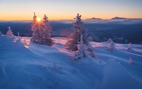 Картинка закат, пейзаж, небо, снег, чудесно, лучи, сказка, облака, лес, ветки, солнце, холмы, вечер, ёлочки, ели, ...
