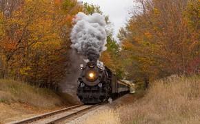 Картинка осень, лес, поезд