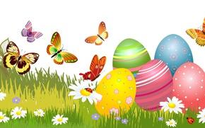 Картинка Трава, Ромашки, Бабочки, Пасха, Яйца, Праздник, Векторная Графика