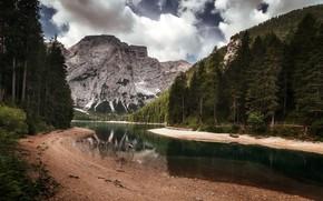 Обои природа, горы, река, лес