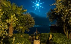 Обои ночь, озеро, пальмы, луна, побережье, Италия, кусты, Lombardy, Sirmione
