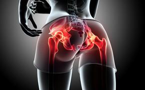 Обои ass, female, butt