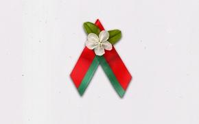 Обои 9 мая, Символ, Беларусь, Яблоневый цвет, Цветы Великой Победы, БРСМ