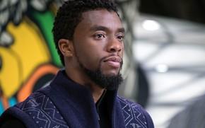 Картинка cinema, man, movie, film, king, Black Panther, Chadwick Boseman, Wakanda, T'challa