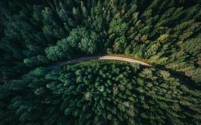 Картинка дорога, лес, Sweden, вид сверху, Gavle