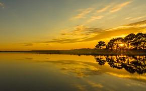 Картинка деревья, закат, озеро, отражение, Англия, England, Гэмпшир, Hampshire, Hatchet Pond, Пруд Хатчет