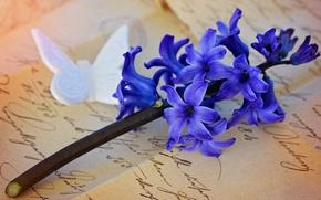 Картинка письмо, цветы, ретро, фон, бабочка, фигурка, почерк, композиция, гиацинт, гиацинты