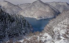 Картинка зима, снег, деревья, горы, озеро, Япония