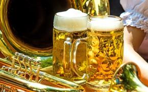 Картинка beer, drink, alcohol