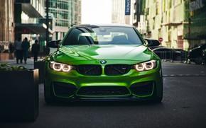 Картинка car, машина, авто, city, green, гонка, bmw, бмв, тачка, спорт кар, автомобиль, need for speed, …