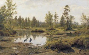 Картинка пейзаж, птицы, природа, картина, цапля, Иван Шишкин, Болото. Полесье