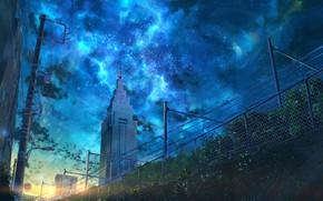 Картинка солнце, закат, цветы, город, знак, NIK