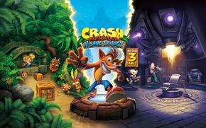 Картинка Game, Activision, Crash Bandicoot N. Sane Trilogy, TheVideoGameGallery.com