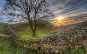 Картинка небо, трава, солнце, закат, камни, стена, дерево, холмы, поля, HDR, сооружение, Великобритания, Hadrians Wall, Вал …