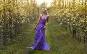 Картинка девушка, весна, сад, фигура, платье, цветение, Amanda S