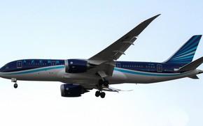 Картинка небо, крылья, самолёт, летит, Пассажирский самолёт