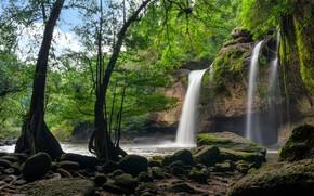 Картинка зелень, лес, деревья, скала, тропики, камни, водопад, мох, Таиланд, Suwat Waterfall, Khao Yai National Park