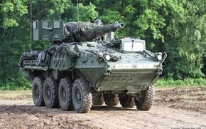 Картинка weapon, armored, military vehicle, armored vehicle, armed forces, military power, 044, war materiel