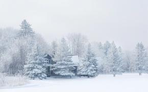Обои зима, лес, снег, природа, мороз, домик