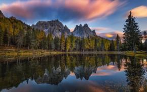 Обои лес, осень, небо, озеро, деревья, природа, горы, отражение