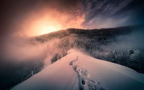 Обои зима, горы, туман
