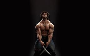 Обои Wolverine, Marvel Comics, когти, Logan, марвел, Логан, Росомаха