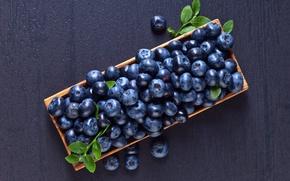 Картинка ягоды, еда, черника, корзинка, витамины, blueberry
