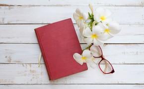 Картинка Цветы, очки, блокнот, плюмерия