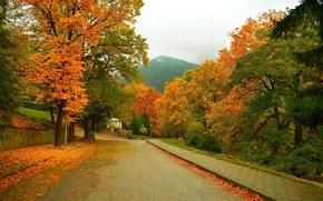 Картинка Дорога, Осень, Деревья, Гора, Улица, Fall, Листва, Mountain, Autumn, Street, Colors, Leaves