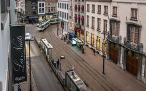 Обои Город, Панорама, Улица, Здания, Бельгия, Street, Belgium, Building, Panorama, Town, Антверпен, Antwerpen, Трамваи