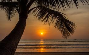 Картинка песок, море, волны, пляж, лето, закат, пальмы, берег, summer, beach, sea, sunset, seascape, beautiful, sand, ...