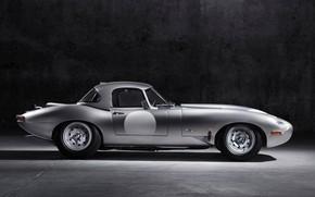 Картинка свет, серый, фон, Jaguar, стальной, E-Type Lightweight