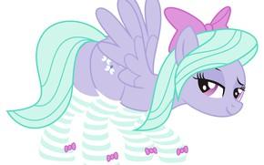 Картинка взгляд, пони, My Little Pony, полосатые чулки