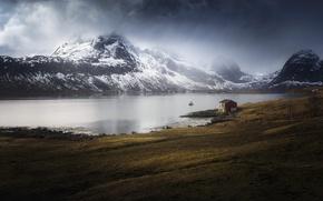 Картинка Norway, Nordland, Marka