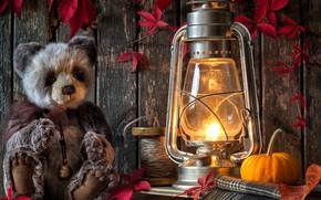 Картинка листья, игрушка, лампа, медведь, фонарь, тыква, плюшевый мишка, катушка