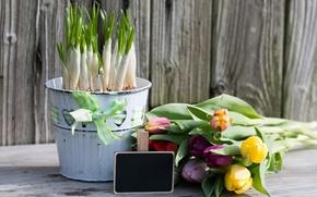 Картинка цветы, букет, colorful, крокусы, тюльпаны, wood, flowers, romantic, tulips, spring