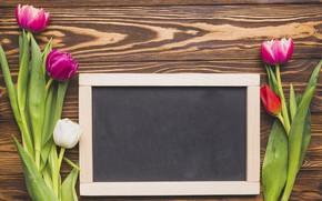 Картинка цветы, яркие, букет, весна, рамка, colorful, тюльпаны, доска, fresh, wood, flowers, tulips, spring, bright
