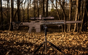 Картинка фон, оптика, снайперская винтовка, MK36H