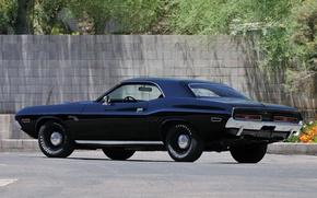Картинка 1971, Dodge Challenger, Hemi, RT426