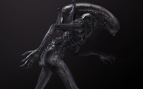 Обои Alien, sci-fi, horror, 2017, terror, xenomorph, science fiction, fear, Alien 6, Prometheus 2, Alien: Covenant, ...