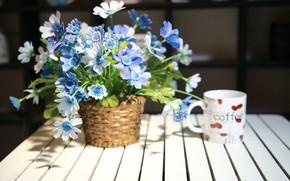 Картинка цветы, букет, ваза, wood
