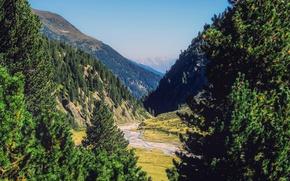 Картинка лес, деревья, горы, Австрия, долина, ущелье, речка, солнечно
