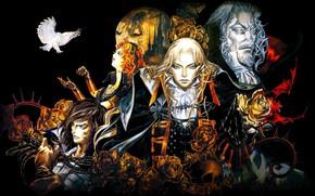 Картинка rose, flower, immortal, man, vampire, Castlevania, hana, Dracula, lord, bokemono