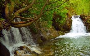 Картинка Зелень, Весна, Водопад, Nature, Green, Spring, Waterfall