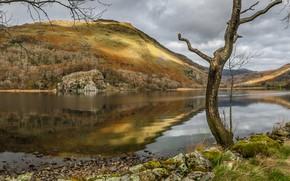Картинка озеро, Уэльс, Сноудония, Ллин Гвинант