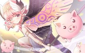 Обои крылья, девочка, ангелок, свинки
