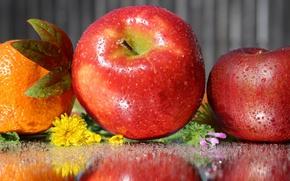 Картинка капли, отражение, яблоко, апельсин