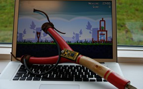 Картинка sport, game, bird, notebook, skill, Angry Birds, Sling, sports activity, adapter, USB cable